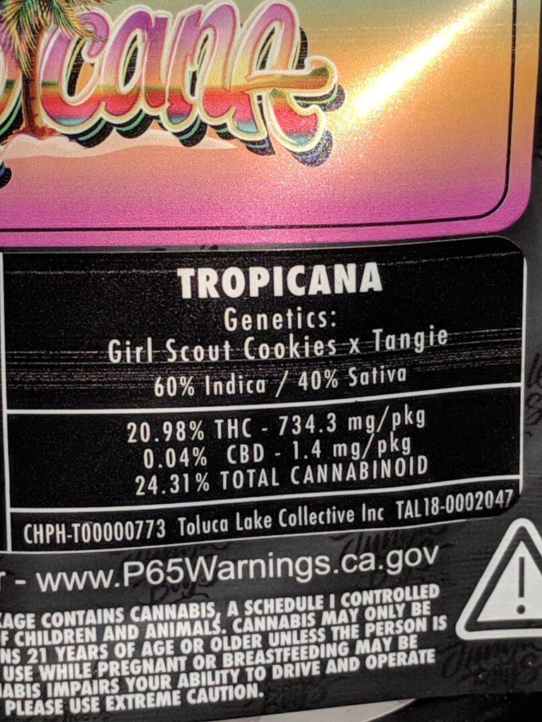 Jungle Boys] Tropicana - Herb•form•er