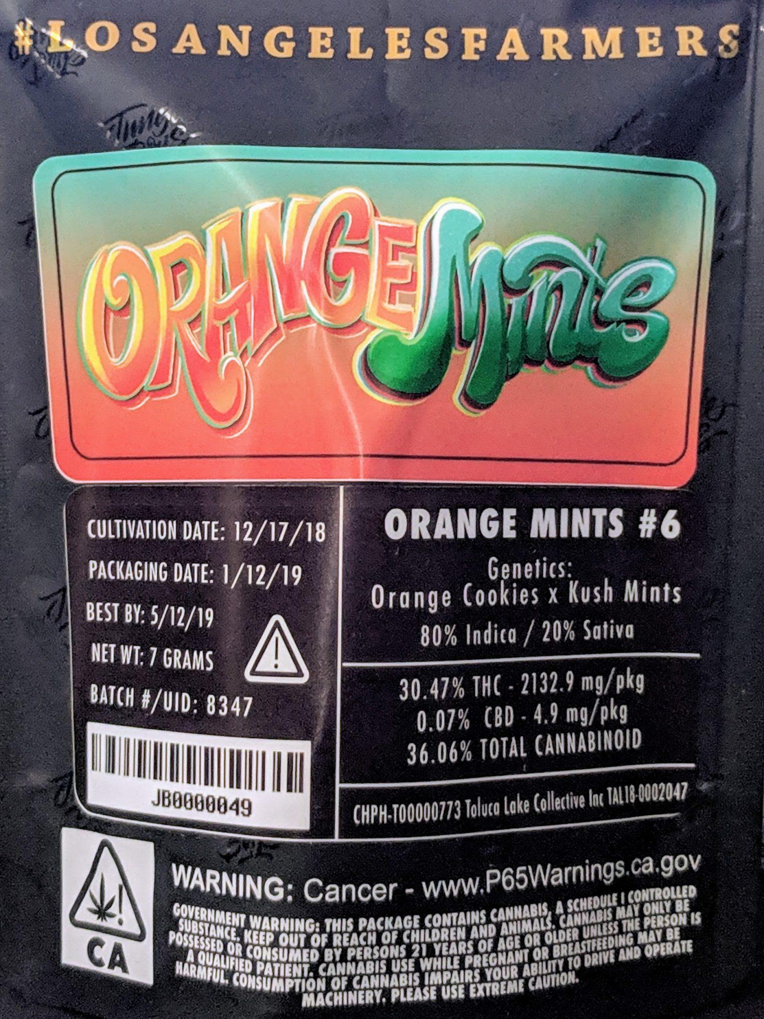 Jungle Boys] Orange Mints #6 - Herb•form•er